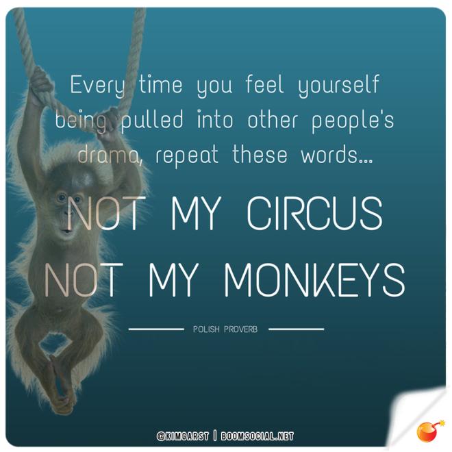 Not my circus, not my monkeys - Polish Proverb
